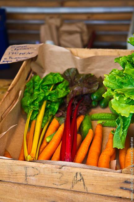 Праздник урожая на Новой Голландии - фото