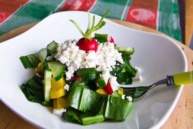 Весенний салат из черемши - фото
