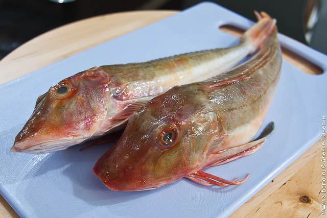 Рыба и рис с овощами - фото