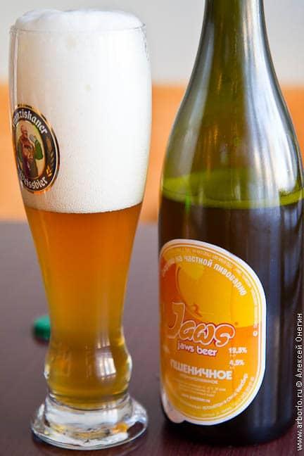 Пивоварня Jaws beer - фото