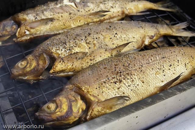 Как коптить рыбу - фото