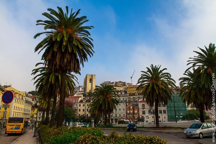Алфама - Лиссабон, Португалия фото