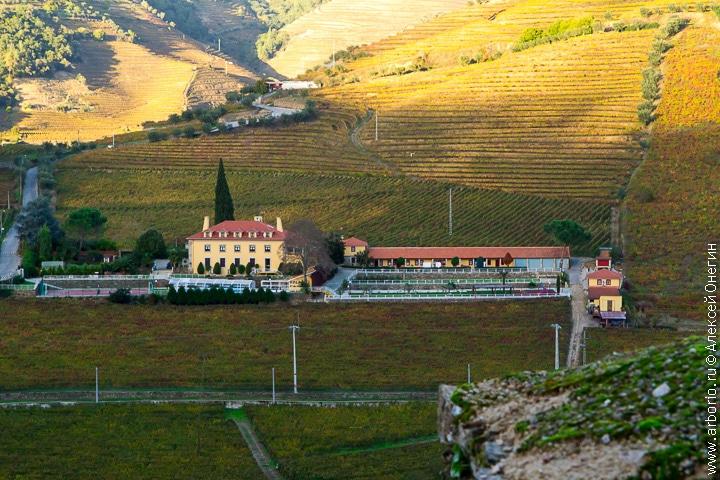 Долина Дору - Португалия фото