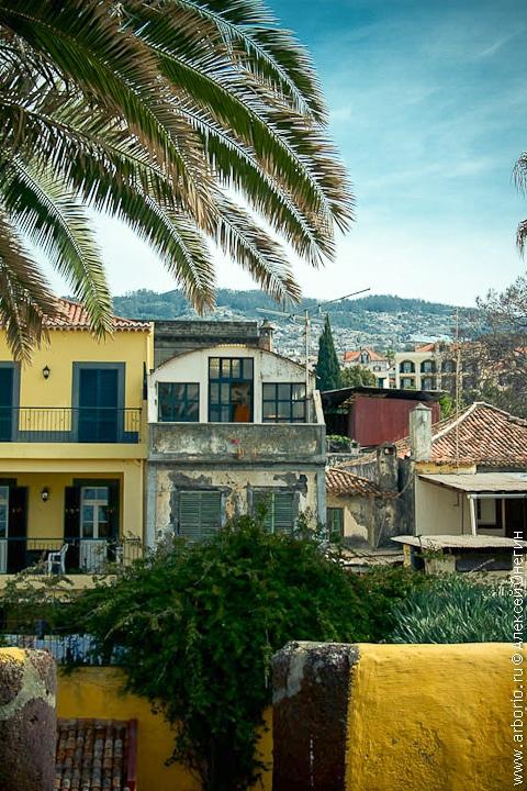 Остров вечной весны - Мадейра, Португалия фото
