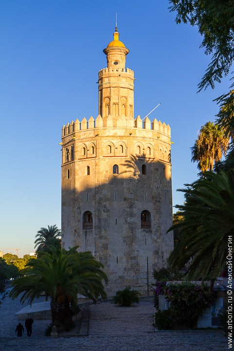 10 причин побывать в Севилье - Испания фото