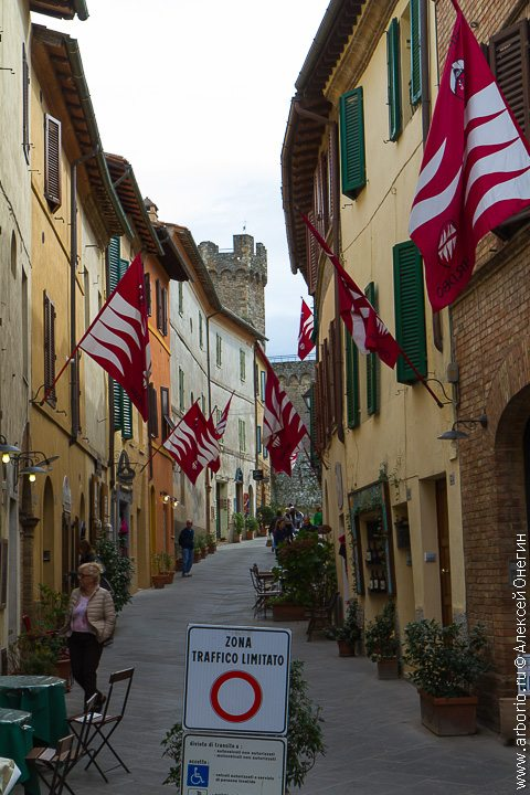 Родина Брунелло - Монтальчино, Италия фото