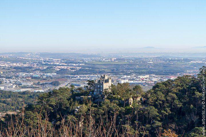 Замок мавров - Синтра, Португалия фото