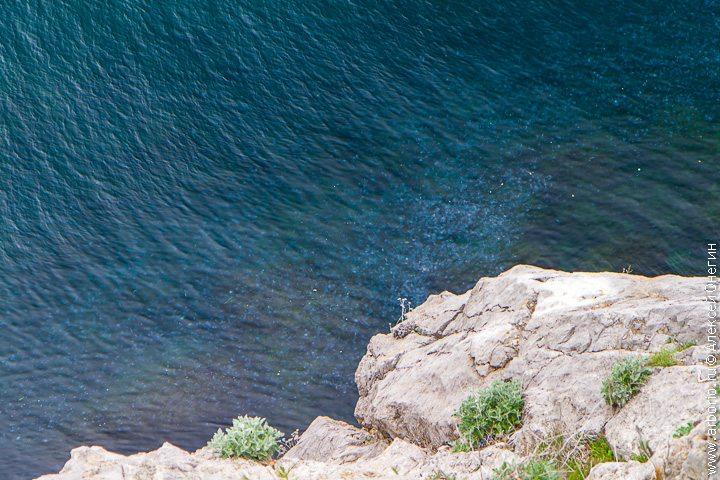 Ласточкино гнездо и ялтинское побережье - Ялта, Россия фото