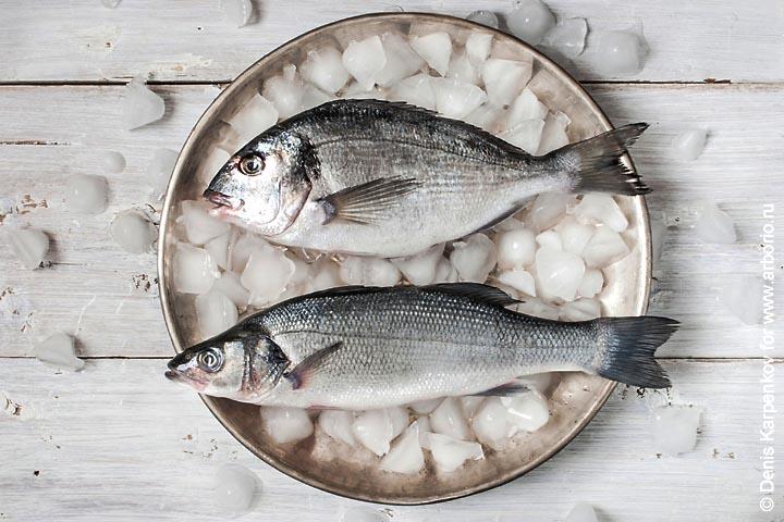 10 советов о том, как правильно выбирать рыбу - фото