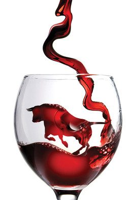 Как выбирать испанские вина? - фото