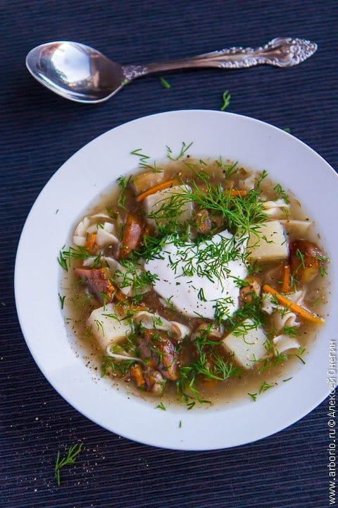 суп из свежих грибов рецепт с фото