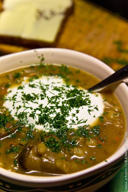 porcini soup Суп из сушеных грибов с перловкой.
