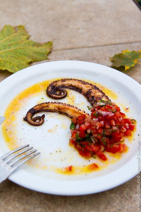 Осьминог с сальсой из помидоров